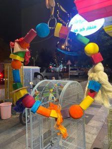 اسباب بازی طوطی تاب رنگارنگ