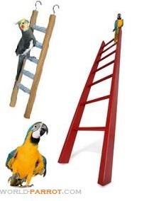 اسباب بازی نردبان طوطی