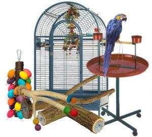 لوازم پرنده پت شاپ پرنده فروشی