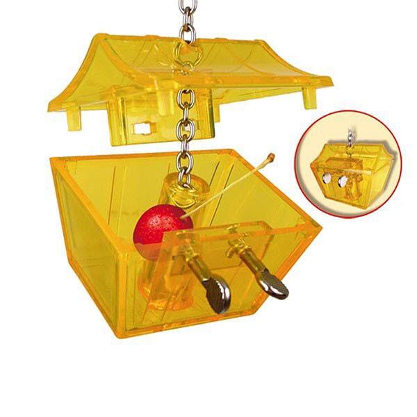 Versteck-Spielzeug-Parrots-Treasure