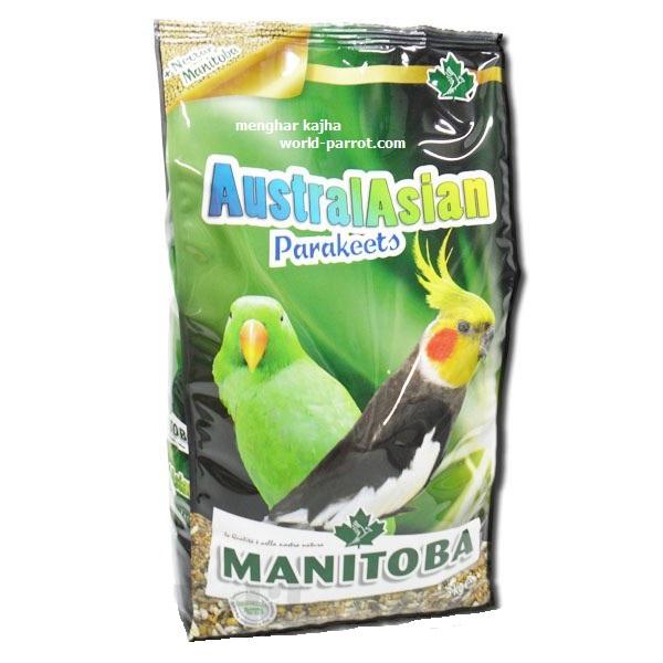 Manitoba Australian Parakeet