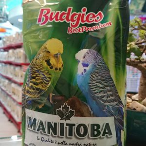 Manitoba Budgies Best Permium Parakeets 6120 Birdfood Parrot