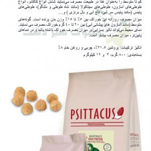 پلت سیتاکوس high protein