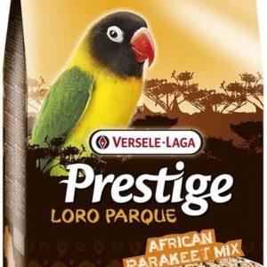 ورسلاگا اورلوکس غذای طوطی برزیلی لاوبرد آفریقایی