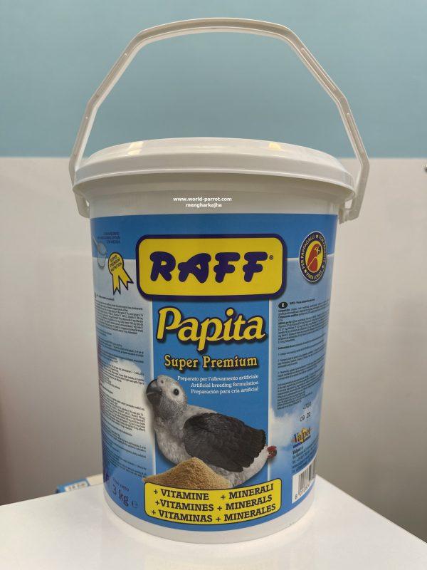 سرلاک راف Raff Papita