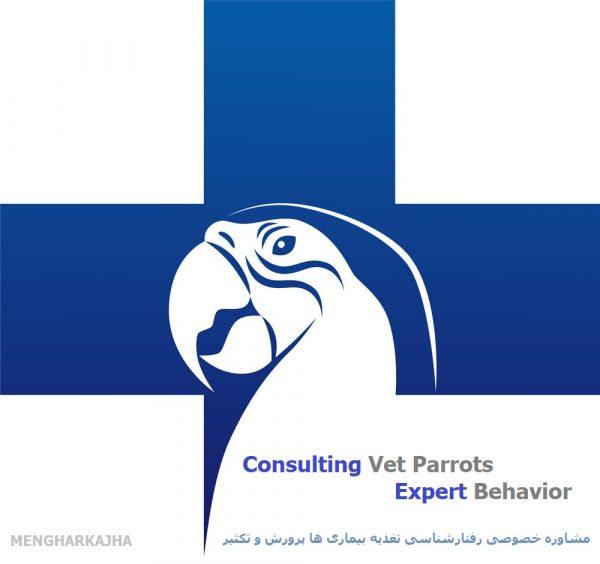 مشاوره تخصصی دامپزشکی پرندگان زینتی طوطی سانان