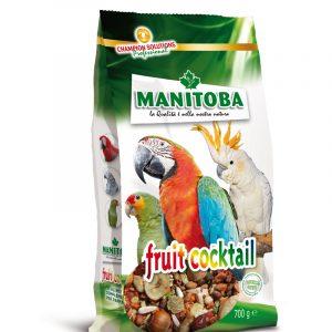 Fruit-Cocktail-manitoba